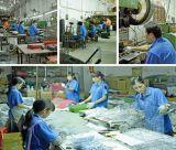 Heiße Verkaufs-Rahmen-Vogel-Fabrik direkt