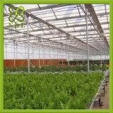 좋은 일광 농업 Hydroponic 온실