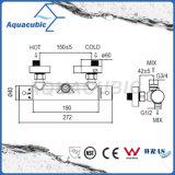 Badezimmer-thermostatischer doppelter Griff-Hahn (AF4322-7)