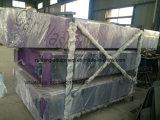 Système automatique de lavage de voiture de machine de lavage de voiture de tunnel