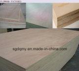Placage de contre-plaqué de séquoia/bon marché contre-plaqué 4X8