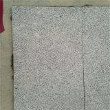 工場直売G341 Xixiaの灰色の花こう岩は特定のサイズにカットした