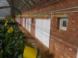 Calefator elétrico do infravermelho do painel de parede do aquecedor do banheiro