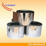 Nichel Based Alloy Ni35cr20 Strip per Braking Resistors