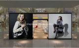 Form-Dame-Handtaschen-Fußboden-Bildschirmanzeige