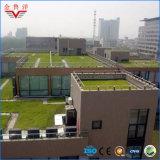 Sbs Waterproof Membrane für Planting Roof, Planting Roof Waterproof Membrane