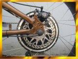 Arena gorda del neumático 2014 bicicleta eléctrica de la nueva 26*4