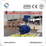 Motore asincrono a tre fasi protetto contro le esplosioni per il ventilatore sotterraneo della miniera di carbone