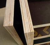 Contre-plaqué phénolique de face de film de noir de faisceau de bois dur de colle