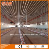 &Equipment de machines de ferme avicole de grilleur d'ensemble complet avec apparier la construction préfabriquée de Chambre