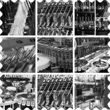 Materiale da otturazione dell'ampolla e macchina di sigillamento (AAG-4)