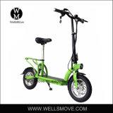개인적인 운송업자 각자 균형 스쿠터 2wheel 전기 스쿠터