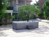 Grande ao ar livre acima dos TERMAS acrílicos à terra da piscina/nadada do Whirlpool (JCS-SS1)