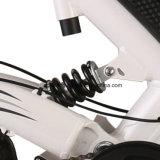 アルミニウム脂肪質のタイヤのセリウムEn15194が付いている電気マウンテンバイク