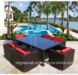 6 Seater Rattan-Patio-Garten-im Freien speisende Möbel