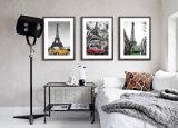Heiße Verkaufs-Möbel-Dekor-Segeltuch-Kunst-Drucke