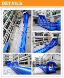 プールが付いている新しいデザイン水スライド