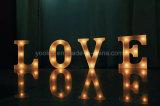 LED 큰천막은 장식적인 가벼운 큰천막 빛 편지 LED 편지를 써 넣는다