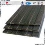 物質的な鋼鉄ストリップの前進を除けば高いLoad-Bearing