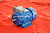 Асинхронный двигатель конденсатора одиночной фазы Yy идущий