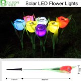 Lampe solaire de jardin de la fleur DEL de tulipe