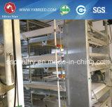 Cage galvanisée à chaud de treillis métallique en vente chaude