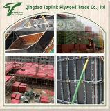 El precio bajo para la madera contrachapada Shuttering común del dedo/la madera contrachapada de la construcción