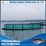 Diâmetro 20m da gaiola da piscicultura da cultura aquática