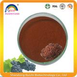Extracto de semente de frutas de uva em pó para alimentos saudáveis