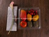 Belüftung-transparenter Frucht-Blasen-Kasten