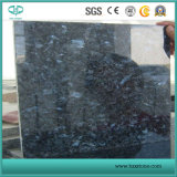 Голубые сляб & плитка гранита перлы для стены/пола и Countertop