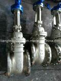 Soupape à vanne d'acier inoxydable avec les extrémités à flasque