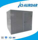 Promenade de qualité dans le réfrigérateur de chambre froide à vendre