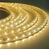 La striscia di alta qualità 3528 LED con Ce RoHS ETL ha approvato