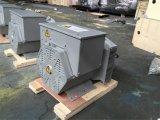 Schwanzloser dreiphasigdrehstromgenerator des Drehstromgenerator-30kw
