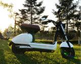 Mini85km langer Ladung-Abstand elektrisches Scooterc Moped für Dame