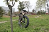 2017 4.0 da bateria MEADOS DE nova gorda do frasco da movimentação do projeto do pneu 500W 48V da polegada a bicicleta elétrica parte jogos dos motores da bicicleta
