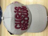 Sombrero bordado a máquina computarizada 3 Funciones Cap camiseta plana del bordado