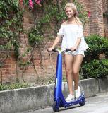 流行デザインのスクーターの自己バランスをとる2つの車輪