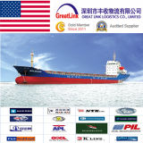 Serviço de transporte barato do frete de mar (LCL/FCL) de China a New York, EUA