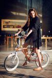 Sistema de movimentação cobrando de Veloup da E-Bicicleta das bicicletas da bicicleta elétrica de Tsinova 2017