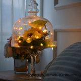 Luz de la cadena del alambre de cobre del LED con la luz con pilas de Faity del tapón de la botella para la decoración