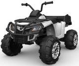 Quarte électrique ATV de 2017 gosses neufs