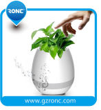 Potenciômetro de flor plástico com o potenciômetro enorme do plantador para plantas