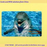 Cartão plástico do parque do jardim zoológico com o código de barras para o aquário