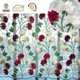 Reticolo floreale della Rosa con il tessuto Techenology specializzato C10049 del merletto del ricamo dei fogli