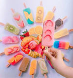 Máquina del palillo del helado con el CE, aprobación de la UL