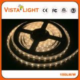 Luz de tira flexible de IP20 el 17W/M 24V LED para los clubs de noche