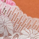 新しい到着のファッション・デザイナーの化学レースファブリック刺繍の織物のレース