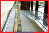 12 engel en 800mm Pallets voor Rollend trottoir
